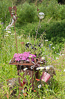 Bepflanzter Feuerkorb, Blumen, Pflanzkorb, Deko, Gartendekoration, Korb, Naturgarten. Planted fire basket, flower, plant basket, decoration, garden decoration, basket, natural garden