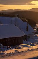 Amérique/Amérique du Nord/Canada/Quebec/Env de Saint-Hilarion : Ferme dans la lumière du soir