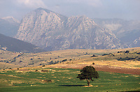 - plateau of High Maceratese, mount Sibillini national park....- altopiano dell'Alto Maceratese, parco nazionale dei Monti Sibillini