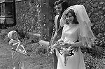Just married and posing for a photograph a bridesmaid brings on another ritual rolling pin to add to the one she already is holding. London 1970s,