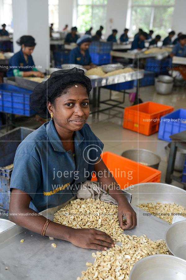 INDIA, Karnataka, Moodbidri, cashew processing factory, imported nuts from africa are processed for export , women sorting different qualities and size / INDIEN, Fabrik fuer Verarbeitung von aus Afrika importierten Kaschunuessen, Frauen sortieren nach Qualitaet und Groesse