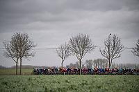peloton<br /> <br /> 75th Omloop Het Nieuwsblad 2020 (1.UWT)<br /> Gent to Ninove (BEL): 200km<br /> <br /> ©kramon