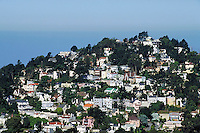 Residences and apartments climb steep hill with many trees. Seen from Twin Peaks in crisp frontal lighting by morning sun. Pacific Ocean horizon in distance. San Francisco California USA.