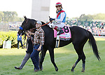 May 01,, 2021:  Medina Spirit and John Velazquez after winning the 147th kentucky Derby at Churchill Downs.  Louisville, KY on May 01, 2021.  Candice Chavez/ESW/CSM