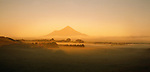 Golden light on Mount Taranaki. New Zealand.