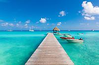 Rangiroa Island, in the Tuamotu Archipelago of French Polynesia, South Pacific.