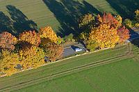 Allee:DEUTSCHLAND, Mecklenburg- Vorpommern 27.10.2005: Allee, Strasse, Felder, Auto,  Herbst, Luftbild