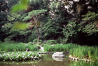 Kyoto: Heian Shrine--gardens and pool. Photo '81.
