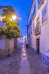 Portugal, Obidos, Cobblestone Street in the Historic Cente at Dawn