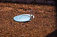 Hilversum, Netherlands, August 5, 2021, Tulip Tennis center, National Junior Tennis Championships 16 and 18 years, NJK, Ballcan top<br /> Photo: Tennisimages/Henk Koster