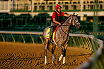 August 30, 2020: Enforceable jogs as horses prepare for the 2020 Kentucky Derby and Kentucky Oaks at Churchill Downs in Louisville, Kentucky. The race is being run without fans due to the coronavirus pandemic that has gripped the world and nation for much of the year. Scott Serio/Eclipse Sportswire/CSM