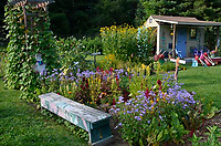 Blooming Community garden with shed and bench and flowers in evening light