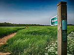 Stour and Orwell Walk, Falkenham near Felixstowe
