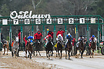 March 14, 2020: Azeri Stakes race at Oaklawn Park on March 14, 2020 in Hot Springs, Arkansas. (Photo by Ted McClenning/Eclipse Sportswire/Cal Sport Media)