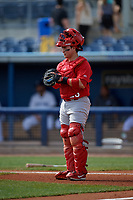 Palm Beach Cardinals catcher Alexis Wilson (26) during a Florida State League game against the Charlotte Stone Crabs on April 14, 2019 at Charlotte Sports Park in Port Charlotte, Florida.  Palm Beach defeated Charlotte 5-3.  (Mike Janes/Four Seam Images)