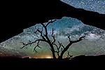 Night sky, Moab, Utah, USA