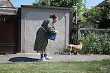 Wo die Katze den Hund jagt