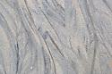 Sediment patterns on sandy beach, Calgary Bay, Isle of Mull, Scotland, UK. June.