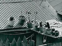 Wohnsiedlung der Bergarbeiter in Taebaek, Korea 1986