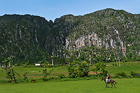 Horse in front of limestone rock formations.
