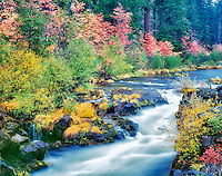 Rogue River and fall color. Rogue River Wild and Scenic River, Oregon