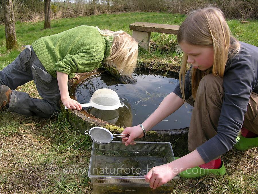 Kinder keschern und tümpeln an einem kleinen Teich im Garten und beobachten Wassertiere