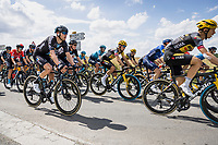 Primoz Roglic (SVN/Jumbo-Visma) in the bunch<br /> <br /> Stage 4 from Tours to Chateauroux (160.6km)<br /> 108th Tour de France 2021 (2.UWT)<br /> <br /> ©kramon