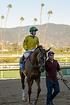 ARCADIA, CA JANUARY 21: #3 Vasilika, ridden by Flavien Prat, returns to the connections after winning Megahertz Stakes (Grade lll) on January 21, 2019 at Santa Anita Park in Arcadia, CA. (Photo by Casey Phillips/Eclipse Sportswire/CSM)