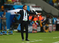 Italy coach Cesare Prandelli gestures on the touchline