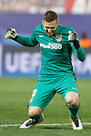 Atletico de Madrid's Jan Oblak celebrates goal during Champions League 2015/2016 Quarter-Finals 2nd leg match. April 13,2016. (ALTERPHOTOS/Acero)