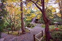 Japanese Tea Garden, Golden Gate Park, San Francisco. Pathway to Drum Bridge