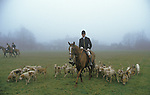 Master of Foxhounds rides out. Badminton in background in mist. Fox Hunting, The Duke of Beaufort Hunt.  Badminton Gloucestershire. The English Season published by Pavilon Books 1987