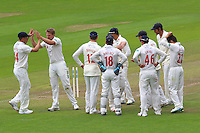 Timm van der Gugten (2nd L) of Glamorgan celebrates taking the wicket of Jaik Mickleburgh during Glamorgan CCC vs Essex CCC, Specsavers County Championship Division 2 Cricket at the SSE SWALEC Stadium on 23rd May 2016