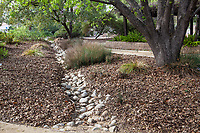 Drainage swale dry creek rain garden for water infiltration in Landscape Southern California Style  - demonstration garden by Western Municipal Water District, Riverside California