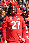 December 30, 2016: A Georgia Bulldog fan in the first half of the AutoZone Liberty Bowl with the Georgia Bulldogs vs TCU Horned Frogs at Liberty Bowl Memorial Stadium in Memphis, Tennessee. ©Justin Manning/Eclipse Sportswire/Cal Sport Media