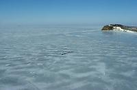 Musher John Cooper on Norton Bay Near Koyuk AK