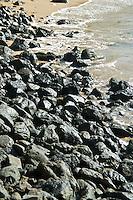 Corredor EcolOgico del Noreste, Fajardo, Puerto Rico 02-11-2009