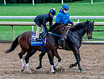 October 30, 2020: Calibrate, trained by trainer Steven M. Asmussen, exercises in preparation for the Breeders' Cup Juvenile at Keeneland Racetrack in Lexington, Kentucky on October 30, 2020. Scott Serio/Eclipse Sportswire/Breeders Cup/CSM
