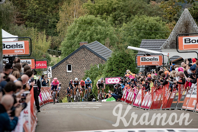 Marc Hirschi (SUI/Sunweb) is the strongest sprinting towards the finish line up the infamous Mur de Huy<br /> <br /> 84th La Flèche Wallonne 2020 (1.UWT)<br /> 1 day race from Herve to Mur de Huy (202km/BEL)<br /> <br /> ©kramon