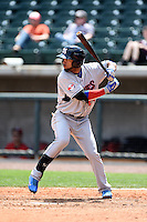 Tennessee Smokies designated hitter Rafael Lopez (29) at bat during a game against the Birmingham Barons on April 21, 2014 at Regions Field in Birmingham, Alabama.  Tennessee defeated Birmingham 10-5.  (Mike Janes/Four Seam Images)