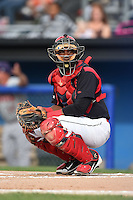 Batavia Muckdogs catcher Joel Jimenez (5) looks to the dugout during a game against the Auburn Doubledays on August 31, 2014 at Dwyer Stadium in Batavia, New York.  Batavia defeated Auburn 7-6.  (Mike Janes/Four Seam Images)