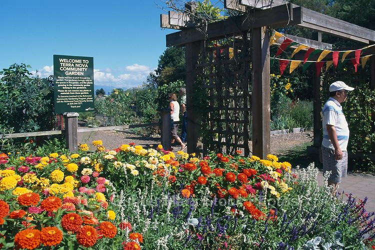 5th Annual Garlic Festival, August 2013 (hosted by The Sharing Farm) at Terra Nova Rural Park, Richmond, BC, British Columbia, Canada - Flowers in Full Bloom at the Terra Nova Community Garden