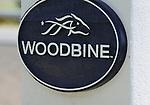 09 September 19: The biggest weekend of the year begins at Woodbine Racetrack in Rexdale, Ontario.