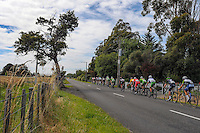 The peleton rides down West Bush Rd during stage five of the NZ Cycle Classic UCI Oceania Tour in Wairarapa, New Zealand on Tuesday, 26 January 2017. Photo: Dave Lintott / lintottphoto.co.nz