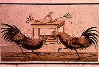 Roman Art:  Mosaic--Lotta di galli.  National Museum, Naples.