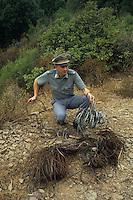 Servizio di prevenzione e repressione del bracconaggio ai danni dei cinghiali. Trappole sequestrate..Service of prevention and repression against the poaching of wild boar. Traps seized....