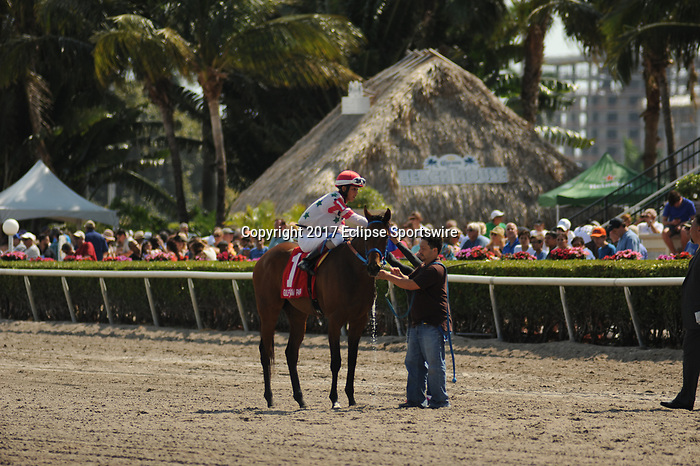 HALLANDALE BEACH, FL - APRIL 01: Conquest Hard Candy, with Edgar Zayas aboard, wins the Sanibel Island Stakes on Florida Derby Day at Gulfstream Park on April 01, 2017 in Hallandale Beach, Florida. (Photo by Carson Dennis/Eclipse Sportswire/Getty Images)