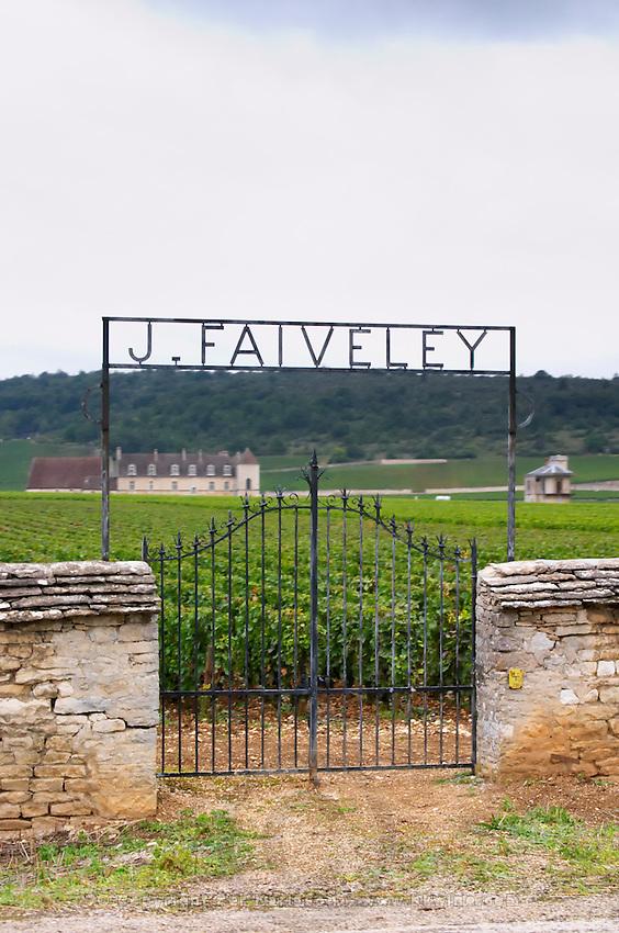 Vineyard. Domaine J Faiveley. Chateau du Clos de Vougeot. Cote de Nuits, d'Or, Burgundy, France