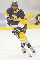 Badger State Winter Games '08 - Women's Hockey