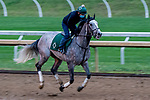 October 30, 2020: Tacitus, trained by trainer William I. Mott, exercises in preparation for the Breeders' Cup Classic at Keeneland Racetrack in Lexington, Kentucky on October 30, 2020. Scott Serio/Eclipse Sportswire/Breeders Cup/CSM